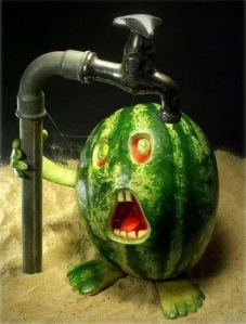 melancia agua