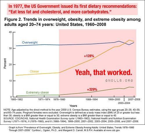 Veja o que aconteceu co os níveis de obesidade quando ouvimos as recomendações nutricionais...